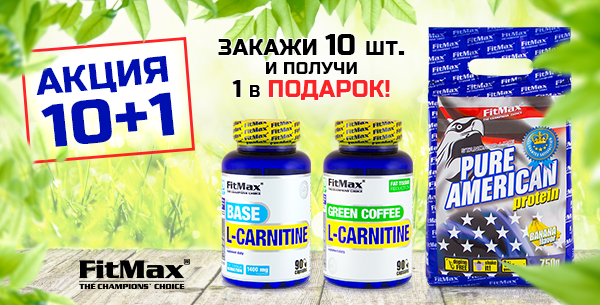 Action-ES-FitMax101
